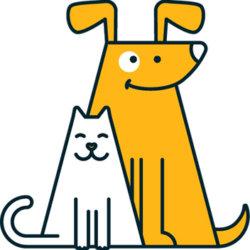yellow-dog-355
